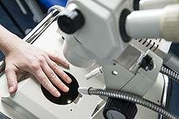 Capillaroscopies cliniques et quantitatives