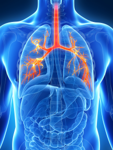 Règles de prévention en pathologie vasculaire périphérique