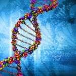 Examens biologiques en pathologie articulaire (Système HLA en rhumatologie)