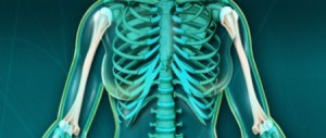 Fractures distales de l'humérus