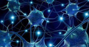 Aspects génétiques des épilepsies