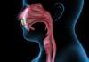 Cancers des voies aero-digestives supérieures