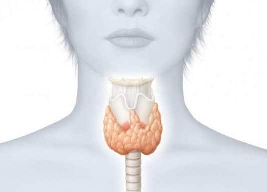 Cancer médullaire de la thyroïde (Suite)