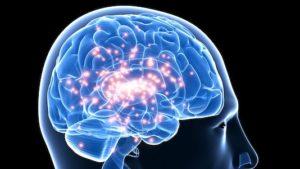 Classification des épilepsies : actuelle et future
