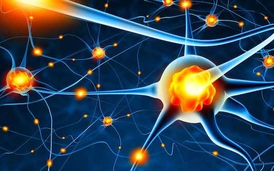 Aspects cliniques, physiopathologiques et thérapeutiques de la sclérose en plaques (Suite)