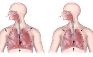 Exploration de la fonction du diaphragme (Suite)