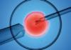 Fécondation in vitro et stérilité