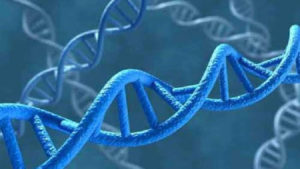 Biologie et génétique moléculaires