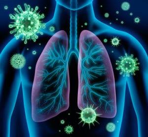 Infections respiratoires basses communautaires de l'adulte (immunodépression exclue) (Suite)