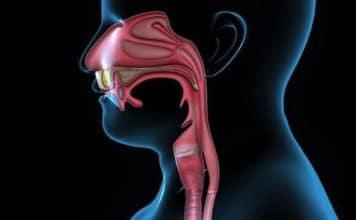 Lymphomes des voies aérodigestives supérieures
