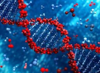 Biologie moléculaire : méthodes et applications aux maladies respiratoires