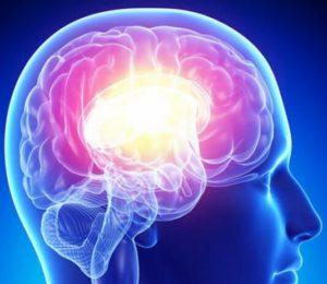 Génétique des maladies du système nerveux périphérique