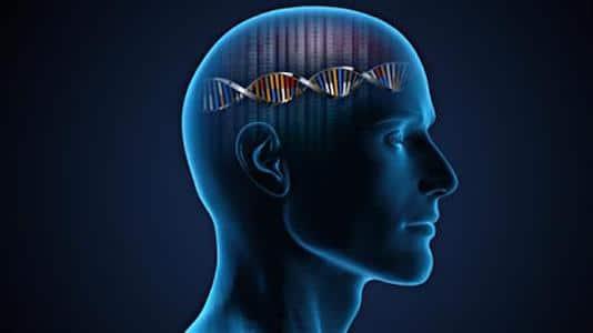 Malformations du développement cortical