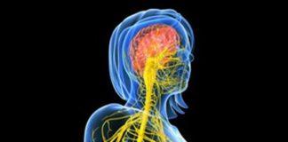 Manifestations neurologiques du VIH (Système nerveux central)