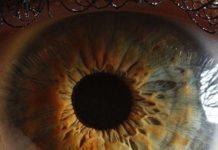 Motricité pupillaire