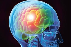 Neurotoxicité des substances naturelles