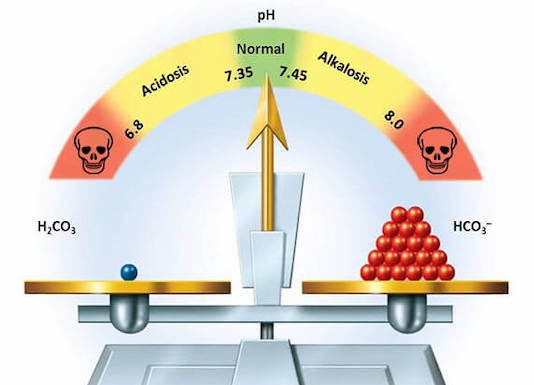 Perturbations de l'équilibre acide-base