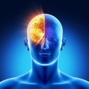 Physiopathologie des crises d'épilepsie