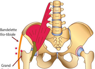 Ressauts de hanche