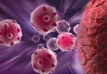 Système des cellules neuroendocrines