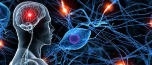 Traitement médical des épilepsies (Suite)