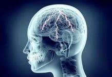 Traitement médical des épilepsies