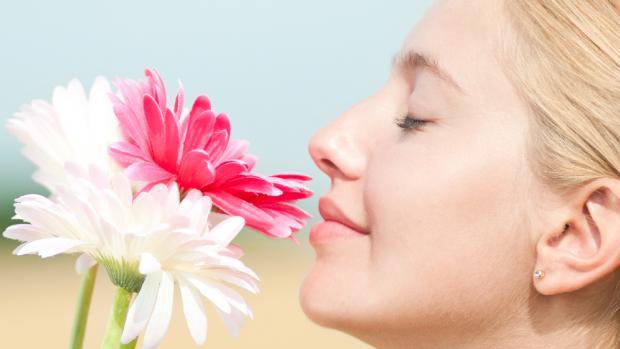 Physiologie, exploration et troubles de l'olfaction (Suite)
