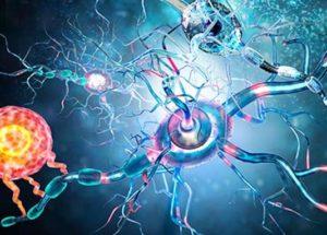 Tumeurs du système nerveux périphérique